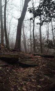 Mountains in North Carolina